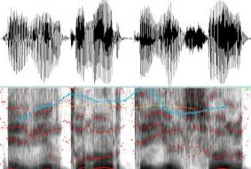 Inducción Peritos Grupo 14 Acústica