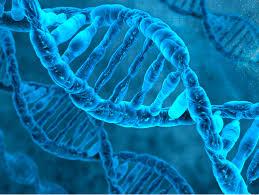 """Módulo """"Parte Legal Extracción Muestras de ADN sanguíneo y Mucosa Bucal"""
