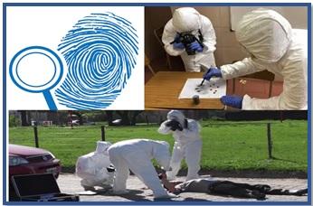 Investigación Criminal y Ciencias Forenses Sección B